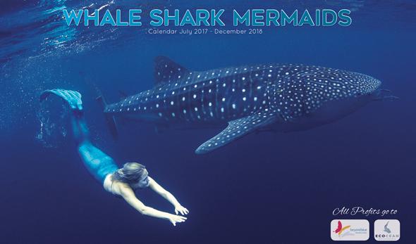 whale-shark-mermaids-calendar-thumb